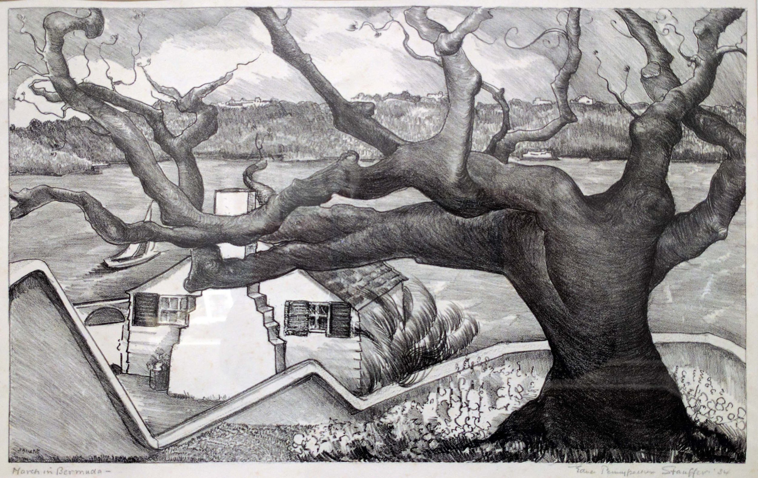 Drawing of a large tree with many branches. There is a house and field in the background.